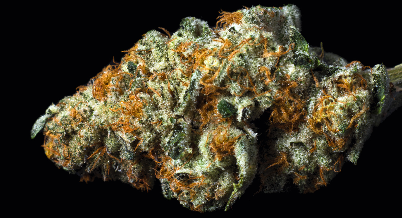 Our Flowers - Wholesale Marijuana Center, Cannabis Supplier, CBD